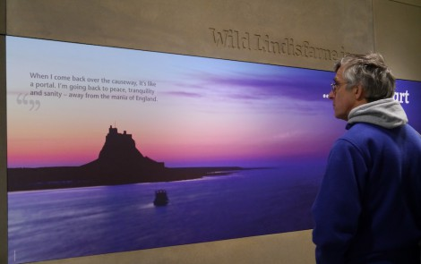 Man looking at introduction panel in Wild Lindisfarne visitor centre