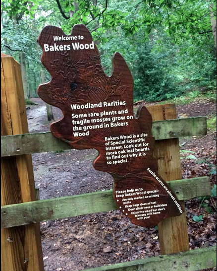 Woodland interpretation panel