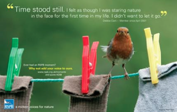 A few years ago, the RSPB broke new ground in moving away from pure science to experience (obj! and love) with their innovative 'Moments ' campaign.
